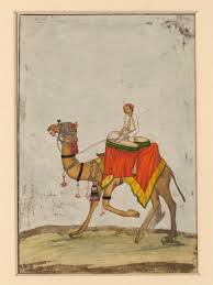 file a camel with its rider playing kettle drums jpg wikimedia