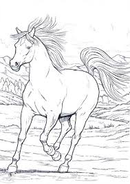 printable 16 wild horse coloring pages 3820 animals coloring