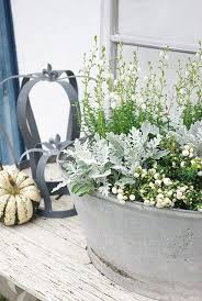 Indoor Garden Containers - 197 best container garden images on pinterest gardening