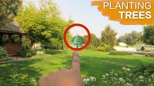 planting some trees garden answer