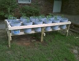 5 gallon bucket mastery 5 gallon gardens