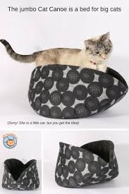 Cat Bed Pattern Jumbo Cat Canoe Cherry Pop Fabric The Cat Ball