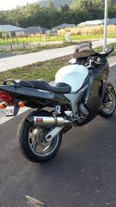 honda cbr honda 44 best honda cbr 1100 xx images on pinterest cbr honda and