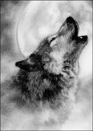 pin by t i e r on wolf moon
