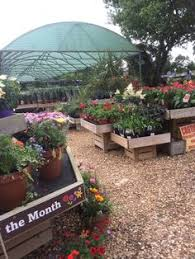 the retail section of our native plant nursery it is set up for