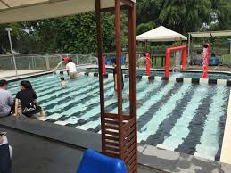review sunny heights dog swimming pool turf club singapore