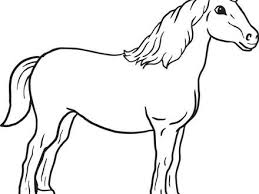 56 horse coloring pages coloring pages realistic horse coloring