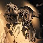 pin jason king ice age giants ice age