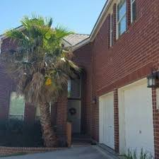 hill country trees 10 photos tree services los angeles