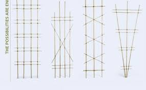 Grape Trellis For Sale Build A Bamboo Trellis Fine Gardening