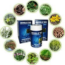 10 obat kuat herbal untuk pria tahan lama bercinta terbukti ampuh
