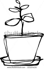 flower pots drawing free vector download 97 499 free vector for