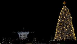 national tree lighting ticket lottery opens on october