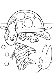 free printable turtle coloring pages kids picture 4