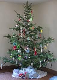 our free range organic christmas tree downeast thunder farm