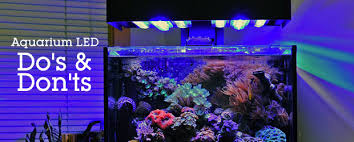 led aquarium lights for reef tanks do s don ts with led aquarium lights saltwater fish tank