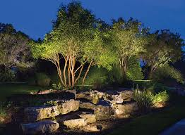 Landscape Tree Lights Landscaping Photo Gallery Distinctive Landscaping Inc