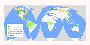 World Biomes Map by Conservation Ecology Global Scale Patterns Of Forest Fragmentation