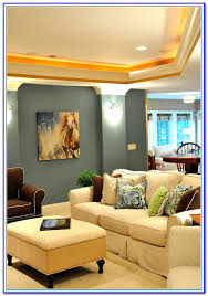 paint colors for basement media room painting home design