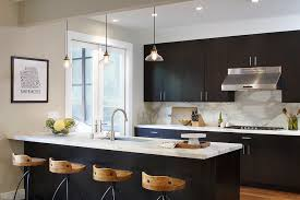 Espresso Kitchen Cabinets by Espresso Frameless Kitchen Cabinets Design Ideas