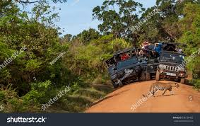 safari jeep front clipart national parks yala sri lanka may stock photo 536128402 shutterstock