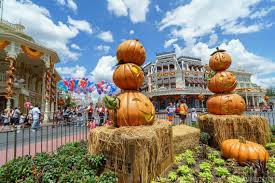 photos a look at this year u0027s magic kingdom halloween decor