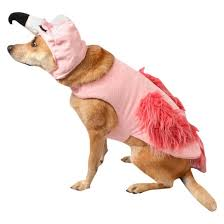 Halloween Costume Boots Flamingo Halloween Costume Boots U0026 Barkley Target
