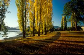 Seeking New Zealand New Zealand Coach Tours Relax We Ll Do The Driving