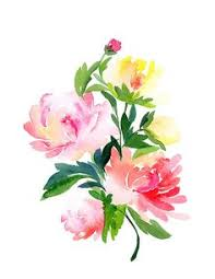 Watercolor Flowers - flora flora watercolor paintings and flora