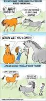 977 best horse quotes images on pinterest equestrian quotes