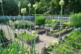 Veggie Garden Layout Ideas Create Your Ideal Space With An Easy Garden Layout