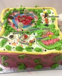 cell model cake forest gate community