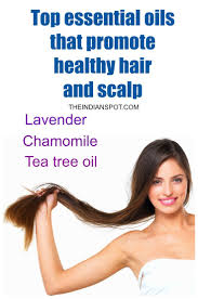 20 best hair oil treatment images on pinterest hair oil hair