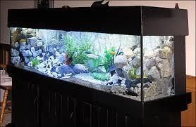 aquarium decorations aquarium caves and ornaments for sale at aquariumfish net