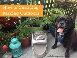 dog friendly decks natural dog safe mosquito control kol u0027s notes