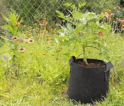 grow bags 4 gallons fabric pot with handles by bootstrap farmer