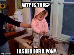 Funny Pony Memes - wtf is this i asked for a pony funny wtf meme image