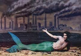mermen fishy business professional mermaid