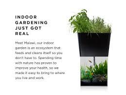 malawi indoor gardening just got real indiegogo