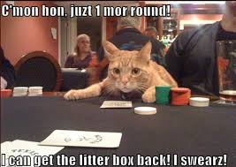 it s time for some casino humor n e time gambling featuring new