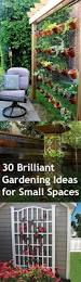 30 brilliant gardening ideas for small spaces bless my weeds