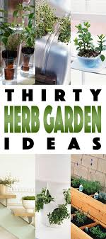 best 20 herb planters ideas on pinterest growing herbs herb gardens 30 great herb garden ideas the cottage market