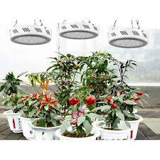 Grow Lights For Indoor Herb Garden - 77 best led houseplant images on pinterest indoor gardening