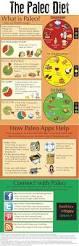 best 25 paleo diet weight loss ideas on pinterest paleo diet