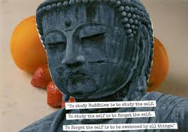 Meme Maker All The Things - wisdom meme maker purple buddha rupa memes pinterest