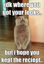 Idk Meme - idk where you got your looks cat meme cat planet cat planet