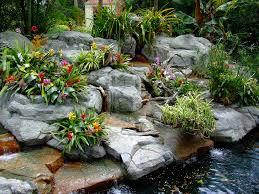 Tropical Rock Garden Tropical Rock Garden Greg Hess Flickr