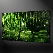 bamboo forest canvas wall art pictures prints variety of sizes bamboo forest canvas wall art pictures prints variety