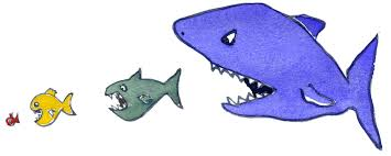 cartoon drawings of fish free download clip art free clip art