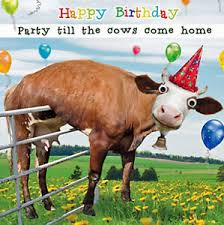 Cow Birthday Card Funny Cow Birthday Card 3d Goggly Moving Eyes Party Till The Cows